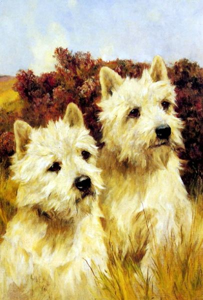 jacque_and_jean,_champion_westhighland_white_terriers-large