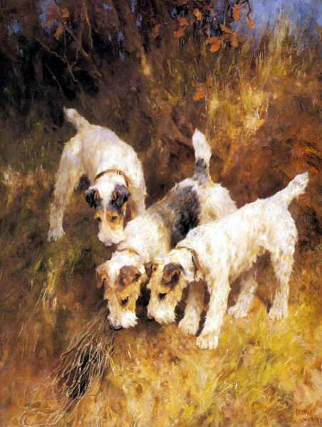 Wardle_Arthur_Terriers_On_The_Scent-large