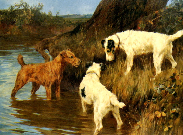 Wardle_Arthur_Three_Terriers_on_the_Scent_Oil_on_Canvas-large